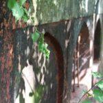 le jardin imperial Himayat bagh