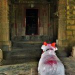 les 10 plus beaux temples du Maharashtra, the top 10 of most beautifuls temples in Maharashtra