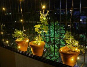 Diwali, lumière